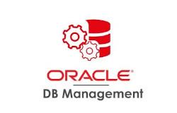Chi Siamo I-One Tecnologia e Competenze Oracle